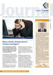 Ausgabe 02 2013